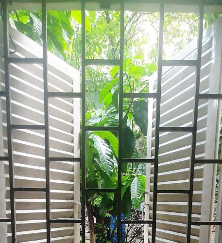 phong thủy cửa sổ